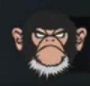 2014.12.17_Angry-Monkey